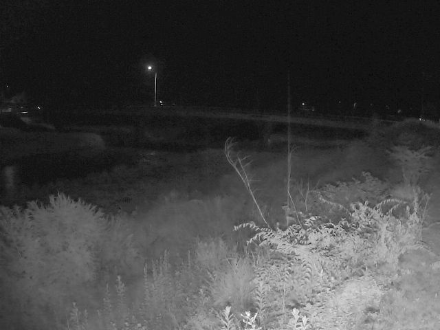 大芝橋のライブカメラ